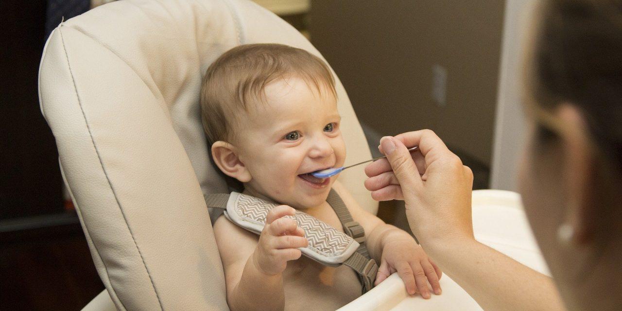 Making Ten Baby Meals For Under £1